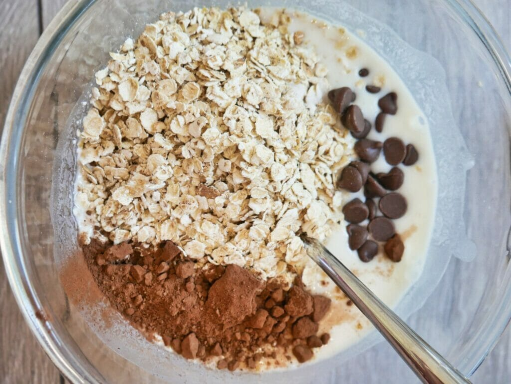 oatmeal cocoa powder and chocolate chips in bowl